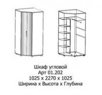 01.202 Шкаф угловой бук