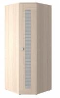 Шкаф для одежды угловой Саша Модерн ИД 01.67