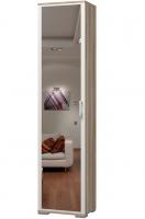 Шкаф для одежды с зеркалом Твист ИД 10.150а